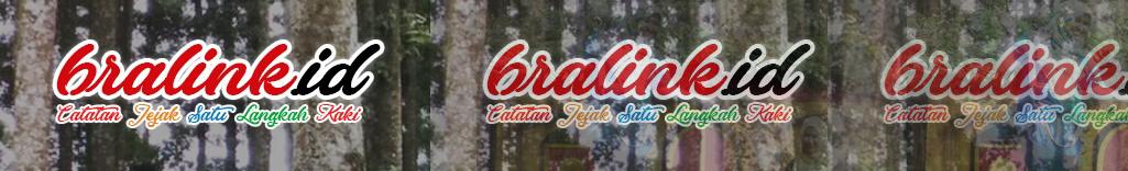 BRALINK.ID